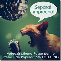 Separat-impreuna-vot-folklung-680x679