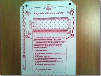 reguli de folosire a toaletei