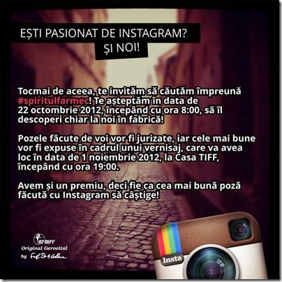 instagram_jpg_invitatie