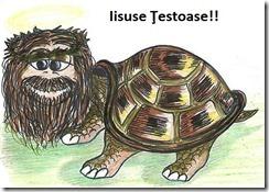 isuse testoase